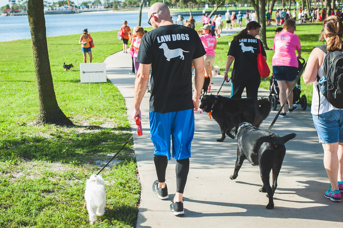 Law Dogs® | SPCA Pet Walk | McDermott Law Firm